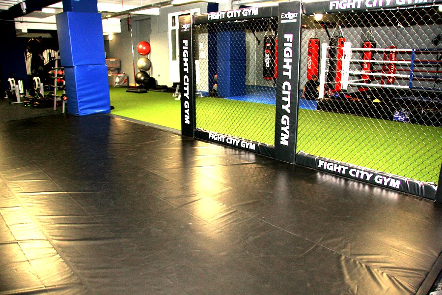 Cage Fighting Area