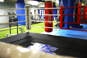 Punching bags and ring