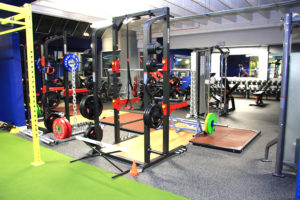 Weights section
